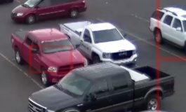 Dearborn police looking for truck thief