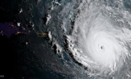 Justice Department warns of disaster fraud after Irma, Harvey