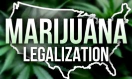 Voters to decide marijuana legalization after legislature fails to act