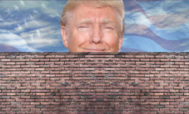 Give Trump his wall and give us back our government
