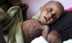 Yemen death toll could hit 233,000 by 2020