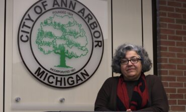 Pro IDF group goes on the attack against Ann Arbor City Council candidate Dr. Mozhgan Savabieasfahani