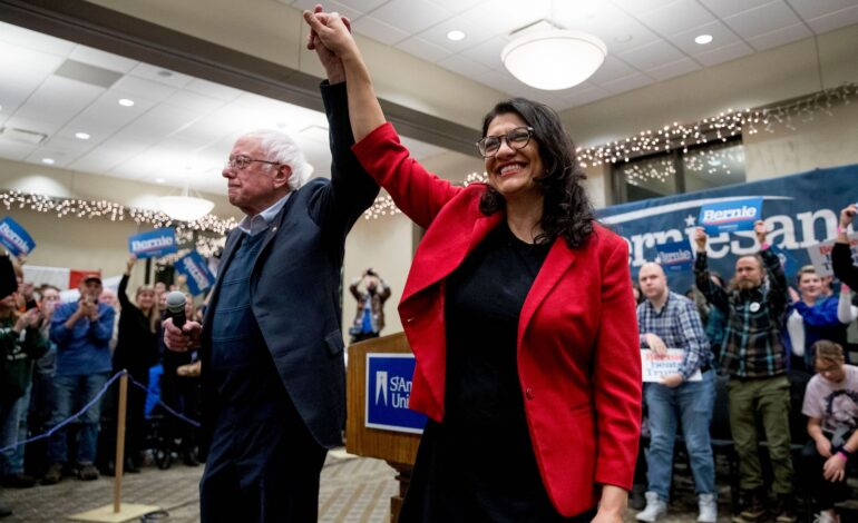 Tlaib casts vote for Sanders, single-payer healthcare, as DNC gets set to nominate Biden