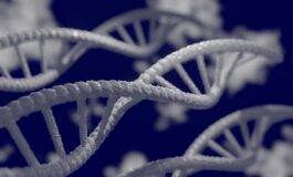 Genome study reveals Arab specific genetic risks
