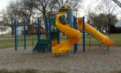 Dearborn parks to be treated with pesticides to stop weed growth