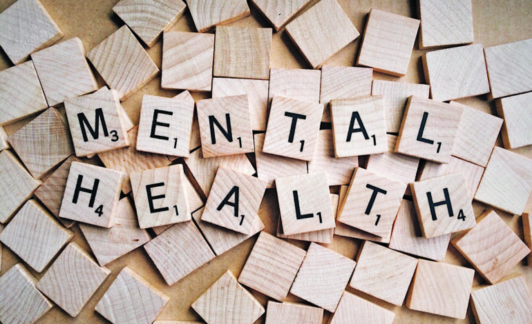 Mental health professionals discuss quality care challenges