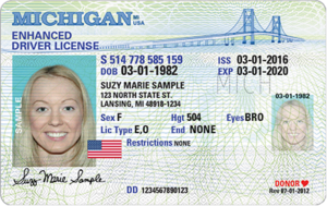 You Will Need A New Michigan Driver S License To Fly In 2020