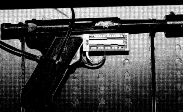 FBI terror unit detains Ypsilanti man