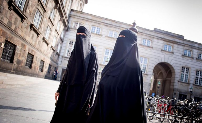 Danish parliament bans wearing face veils in public