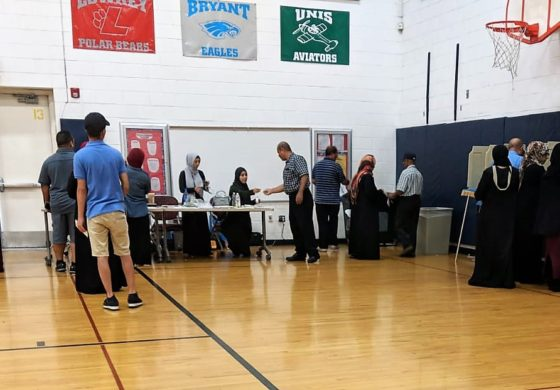 Dearborn and Michigan voters set new voter turnout records
