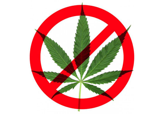 Opponents of Michigan pot legalization proposal speak out