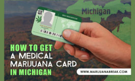 Online registration now available for Michigan's medical marijuana patients