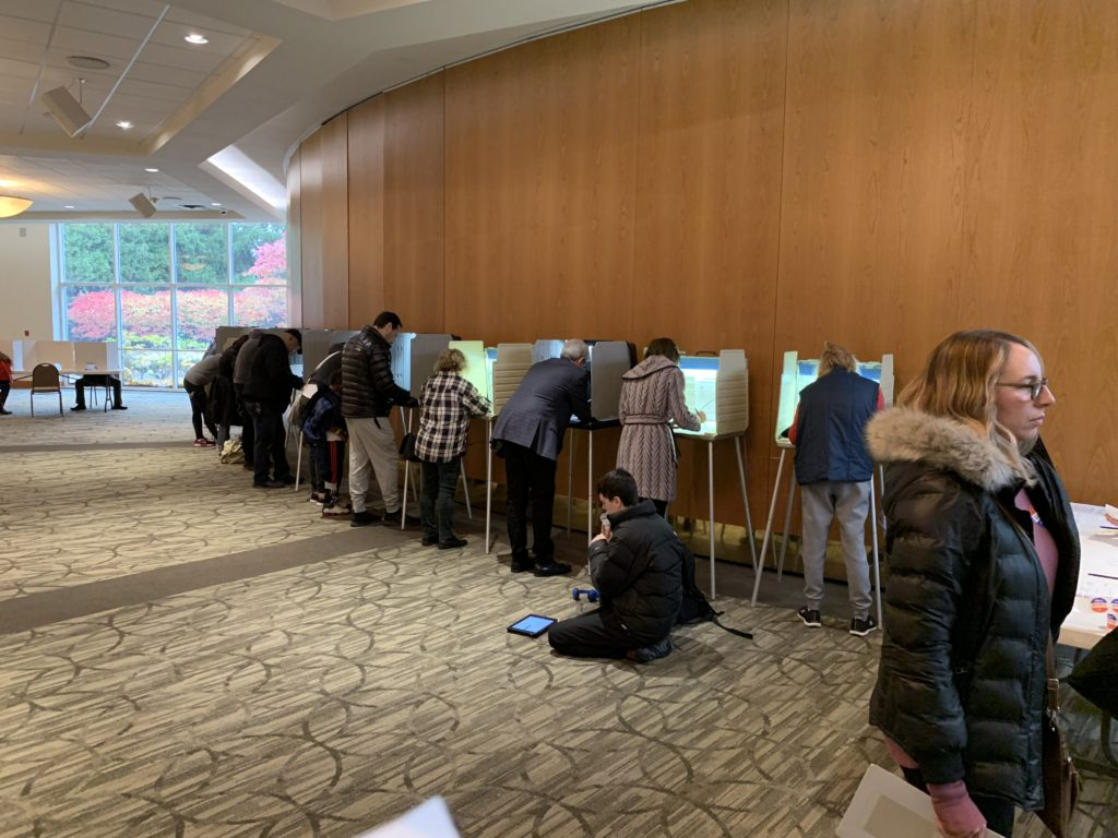 Voters casting their votes for the midterm elections in a precincts in West Bloomfield, Michigan. Photos by The AANews