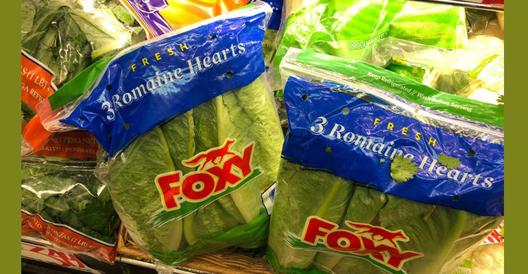 Abstain from romaine: U.S., Canada warn of E. coli in lettuce