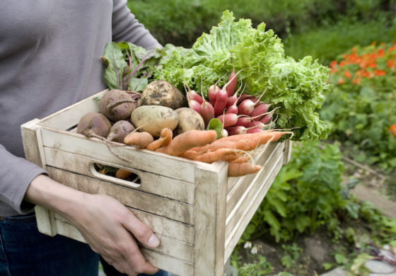 Could a better diet cool your Inflammation? Avoid these five food groups
