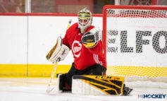 Arab American goalie thrilled for chance to compete with hometown favorite Detroit Red Wings