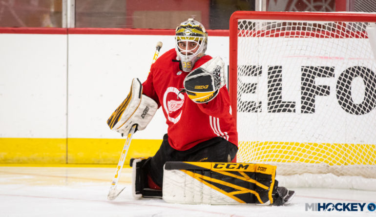 cheap for discount 6a62a bcdd3 Arab American goalie thrilled for chance to compete with hometown favorite Detroit  Red Wings