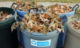 Loose leaves collection, as well as bagged collection, continues until Dec. 9-13