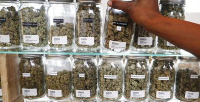 Recreational marijuana shops could begin sales this December