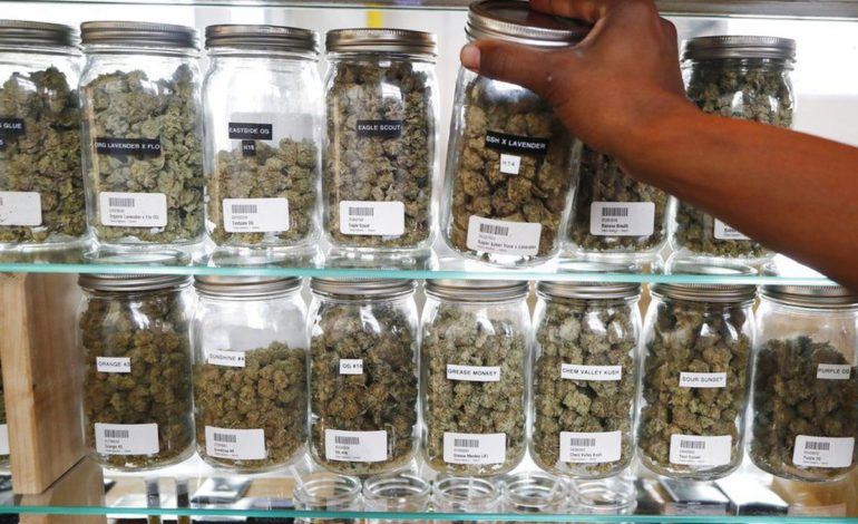Recreational marijuana shops could begin sales this December