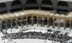 Coronavirus Mid East updates: Saudi's suspend pilgrimages, virus widespread in Iran