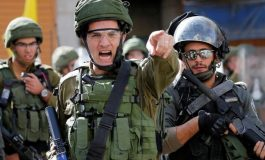 Spreading the virus of occupation: Spitting as a weapon in the hand of colonial Israel