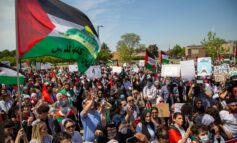 ADC: Workplace discrimination against pro-Palestinian voices on the rise