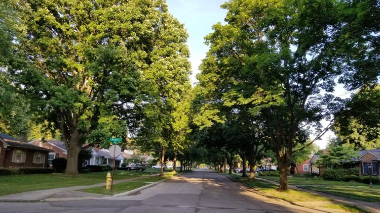 Dearborn continues tradition of being Tree City, USA