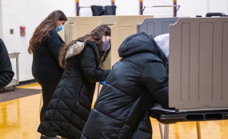 Dearborn Arab American community in danger of losing representation in Lansing