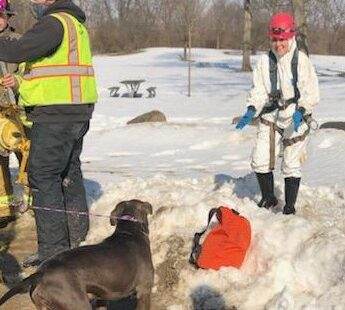 Dearborn Heights Fire Department, animal control and sewer workers work together to save a dog's life