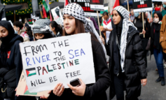 Palestine's moment: Despite massive losses, Palestinians have altered the course of history