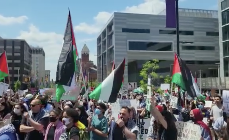 March for Palestine's liberation in Ann Arbor, May 22
