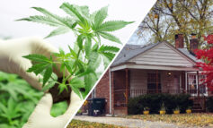 Study shows an increase in home values in states that have legalized marijuana