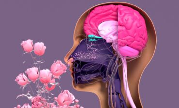 Henry Ford neurologist explains loss of smell after COVID and how to recover